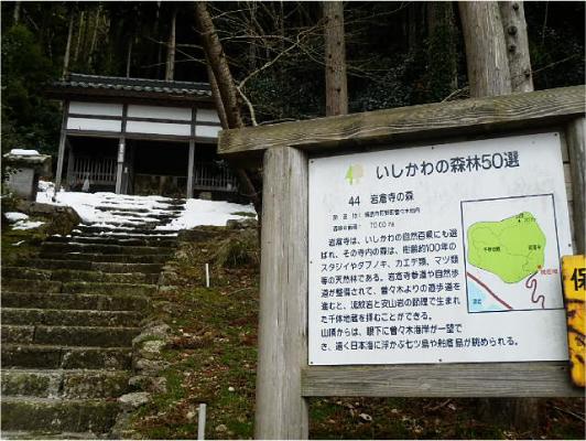 岩倉寺の森
