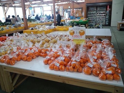 20140409 ‗どんぶり館・柑橘
