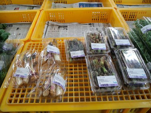 20140409 ‗どんぶり館・山菜