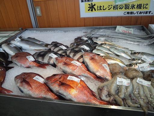 20140409 ‗どんぶり館・鮮魚