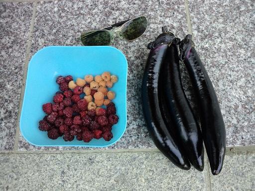 20140612_今日の収穫