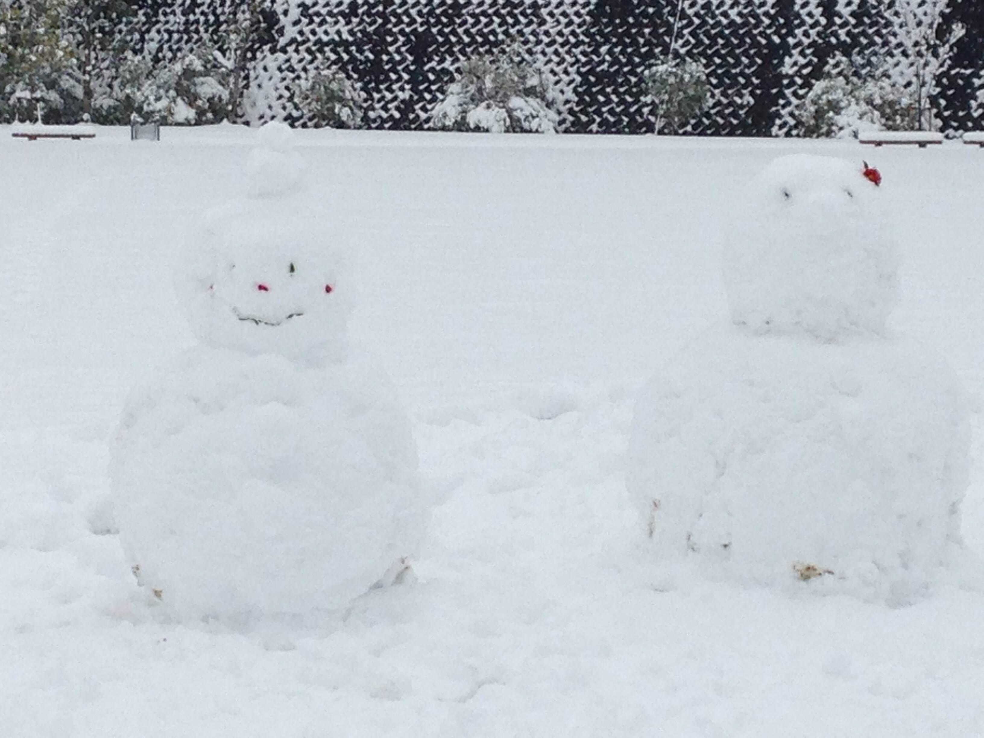 2photo大雪