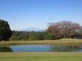 2014.11.19東京・神奈川3