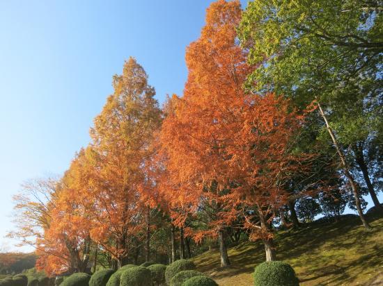 2014.11.21兵庫