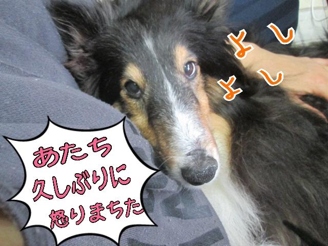 2014-03-13-14-02-52_deco.jpg