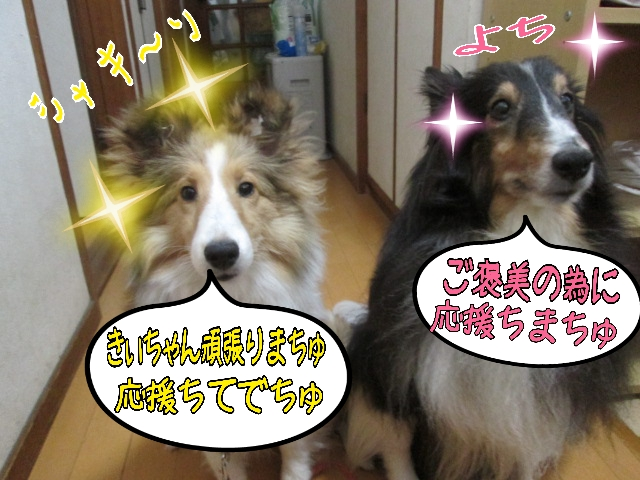 2014-03-20-09-24-03_deco.jpg