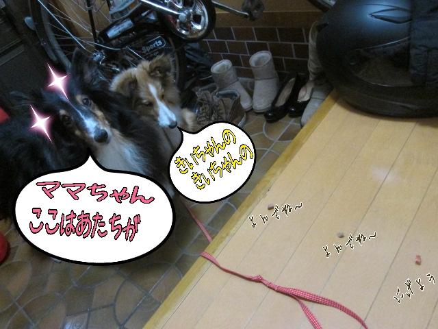 2014-03-20-10-16-46_deco.jpg