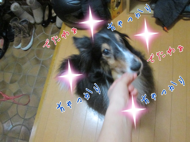 2014-03-20-10-22-55_deco.jpg