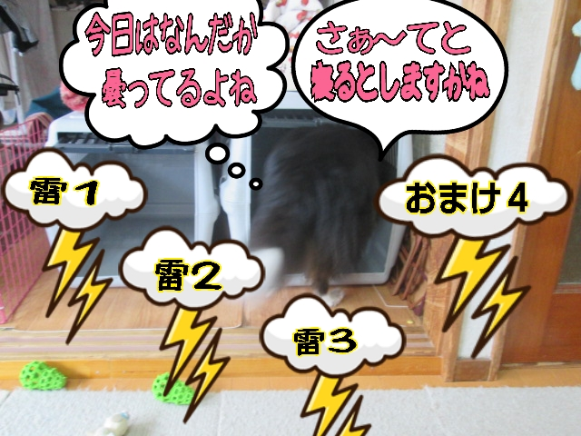2014-03-26-17-07-37_deco05.jpg