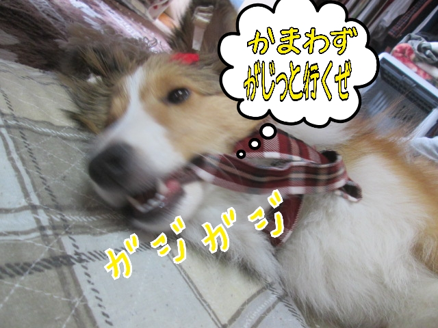 2014-03-30-12-58-30_deco.jpg