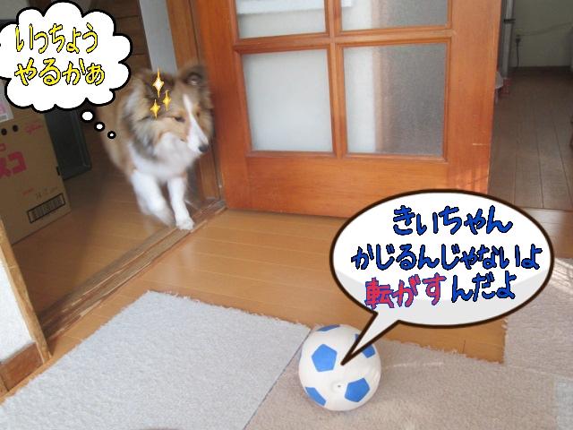 2014-04-02-08-38-59_deco.jpg
