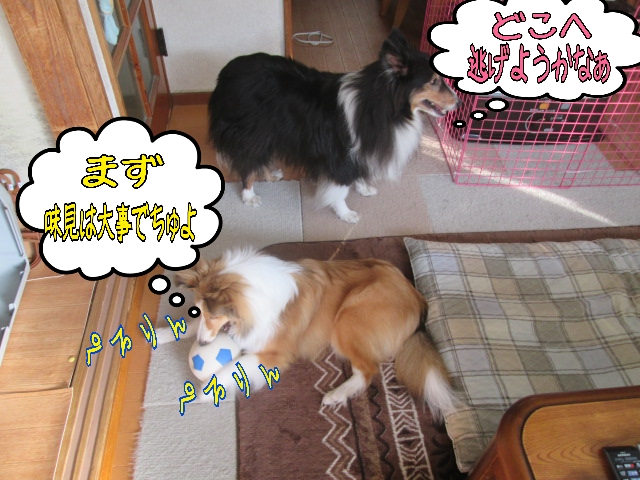 2014-04-02-08-56-37_deco.jpg