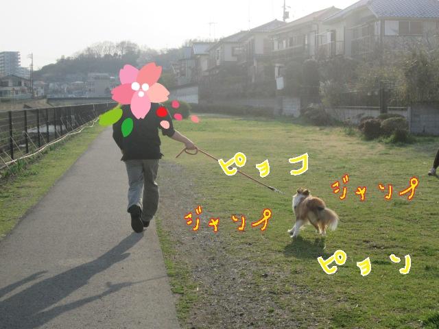 2014-04-02-09-30-34_deco.jpg