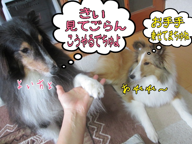 2014-04-03-10-12-41_deco.jpg