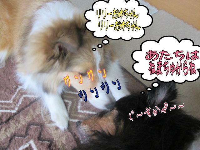 2014-04-03-10-26-22_deco.jpg