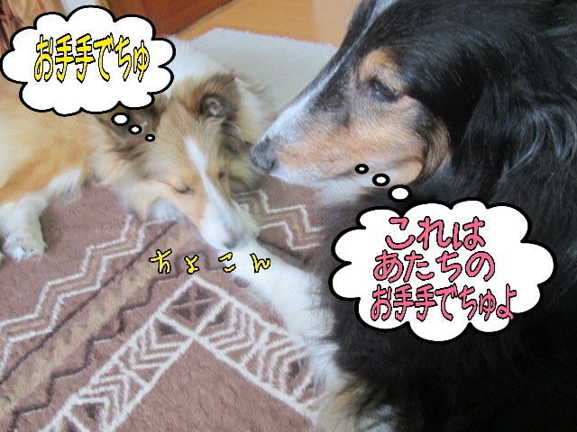 2014-04-03-11-36-55_deco.jpg