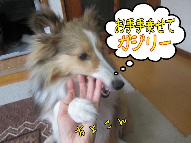 2014-04-03-11-45-47_deco.jpg