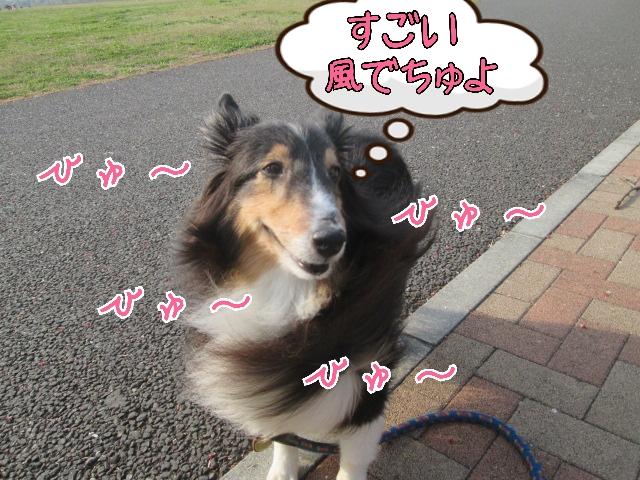 2014-04-16-21-23-40_deco.jpg
