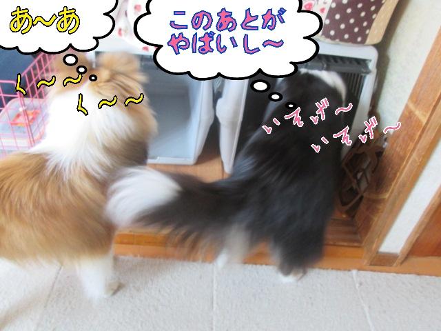 2014-04-25-10-56-50_deco.jpg