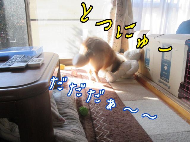 2014-04-25-11-12-48_deco.jpg