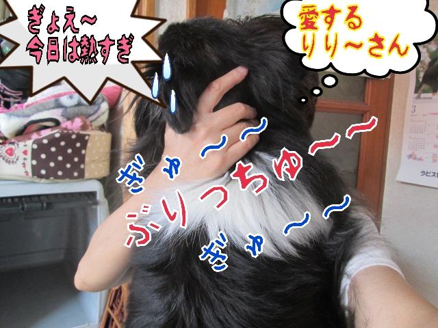 2014-04-25-12-08-53_deco.jpg