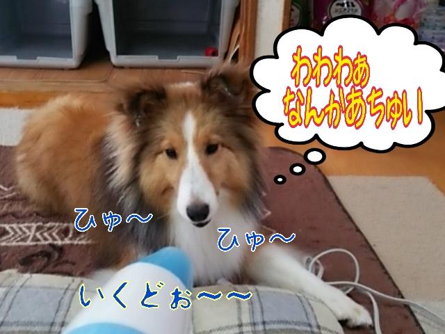 2014-05-26-10-26-15_deco.jpg