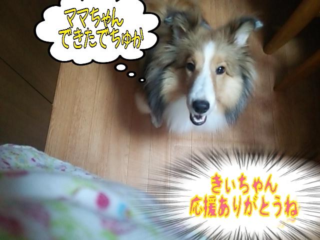 2014-06-05-12-56-17_deco.jpg