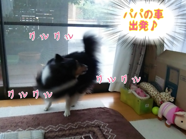 2014-06-07-14-03-59_deco.jpg