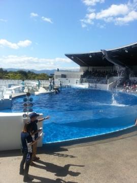 20141007京都水族館2