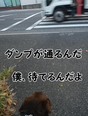 PA070022.jpg