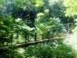 四号路(吊り橋)