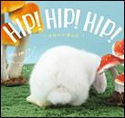 hip!hip!hip!.jpg
