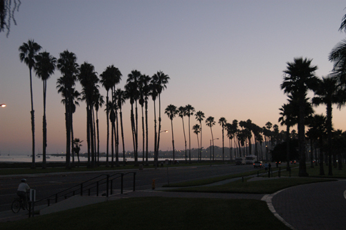 カリフォルニア01