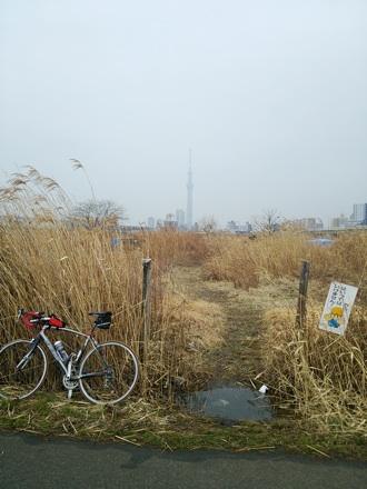 20140301_skytree.jpg