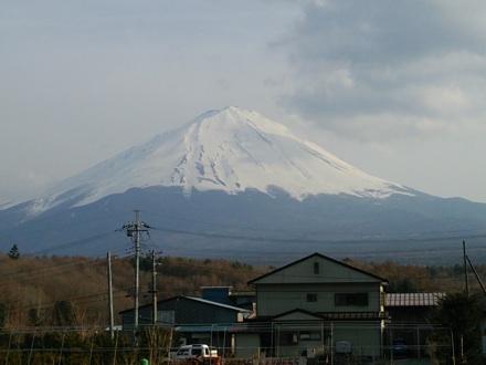 20140412_narusawa.jpg