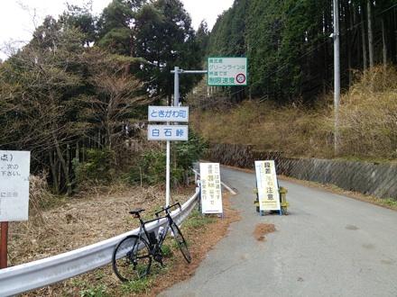 20140419_siraisi3.jpg