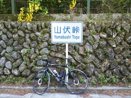20140503_yamabusi.jpg