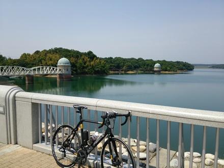 20140524_tamako.jpg