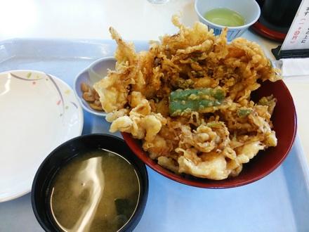20140525_lunch.jpg