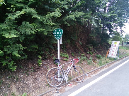 20140531_ipponsugi.jpg