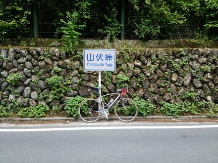 20140531_yamabusi.jpg