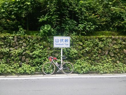 20140706_yamabusi1.jpg