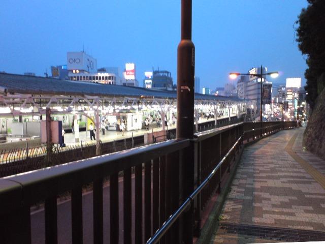W_UenoGezan1_617.jpg