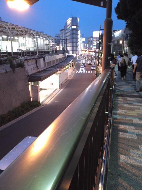 W_UenoGezan4_617.jpg