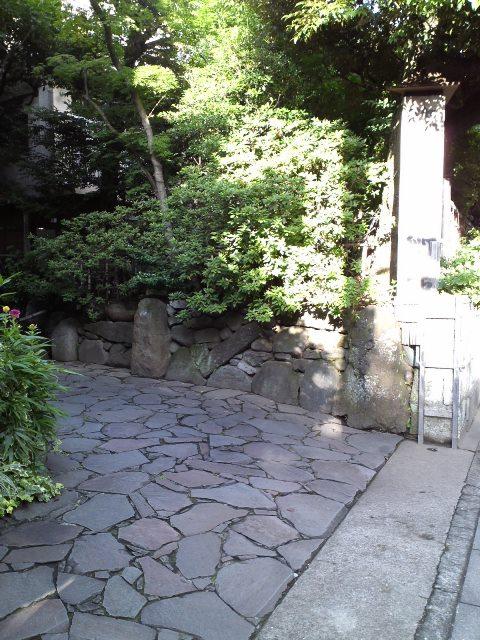 Yoyoi_Bi01.jpg