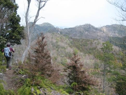 大黒山~竜ケ岳 020