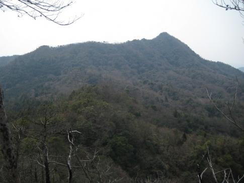 大黒山~竜ケ岳 022