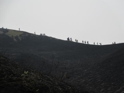 雲月山山焼きボランテイア 041