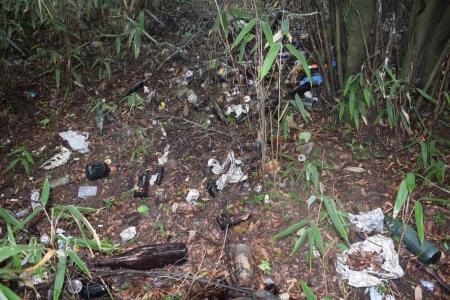 21藪道ゴミ