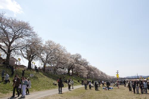 2014_0413_3.jpg